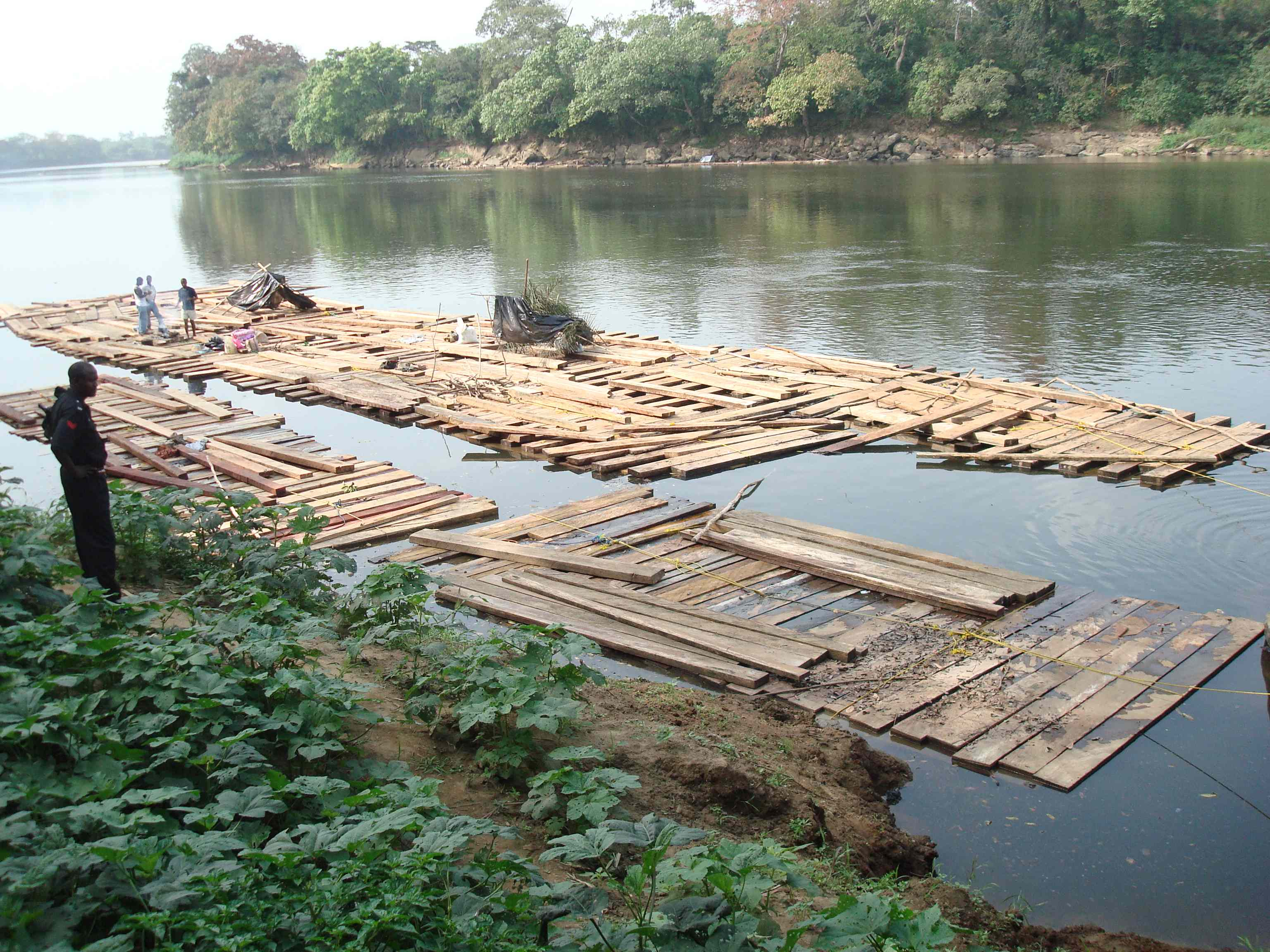 Raft of illegal timber from Cameroon seized by ATF